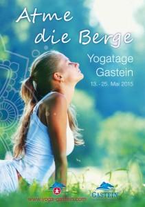 yogagastein2015_cover_300