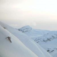 Lazy Snowboard Movie Weekend // Snowboardfilm Wochenende